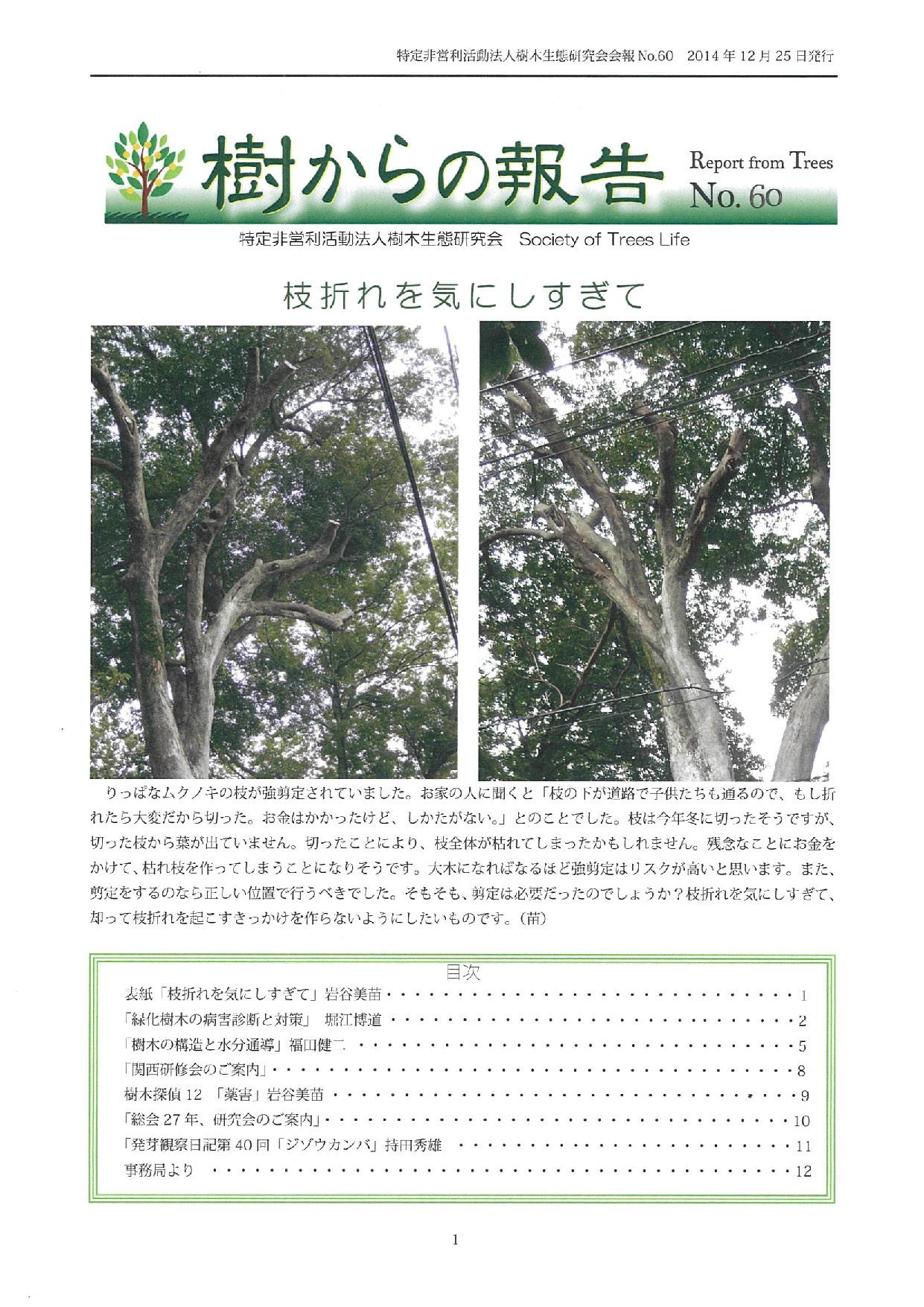 樹からの報告 会報60号表紙