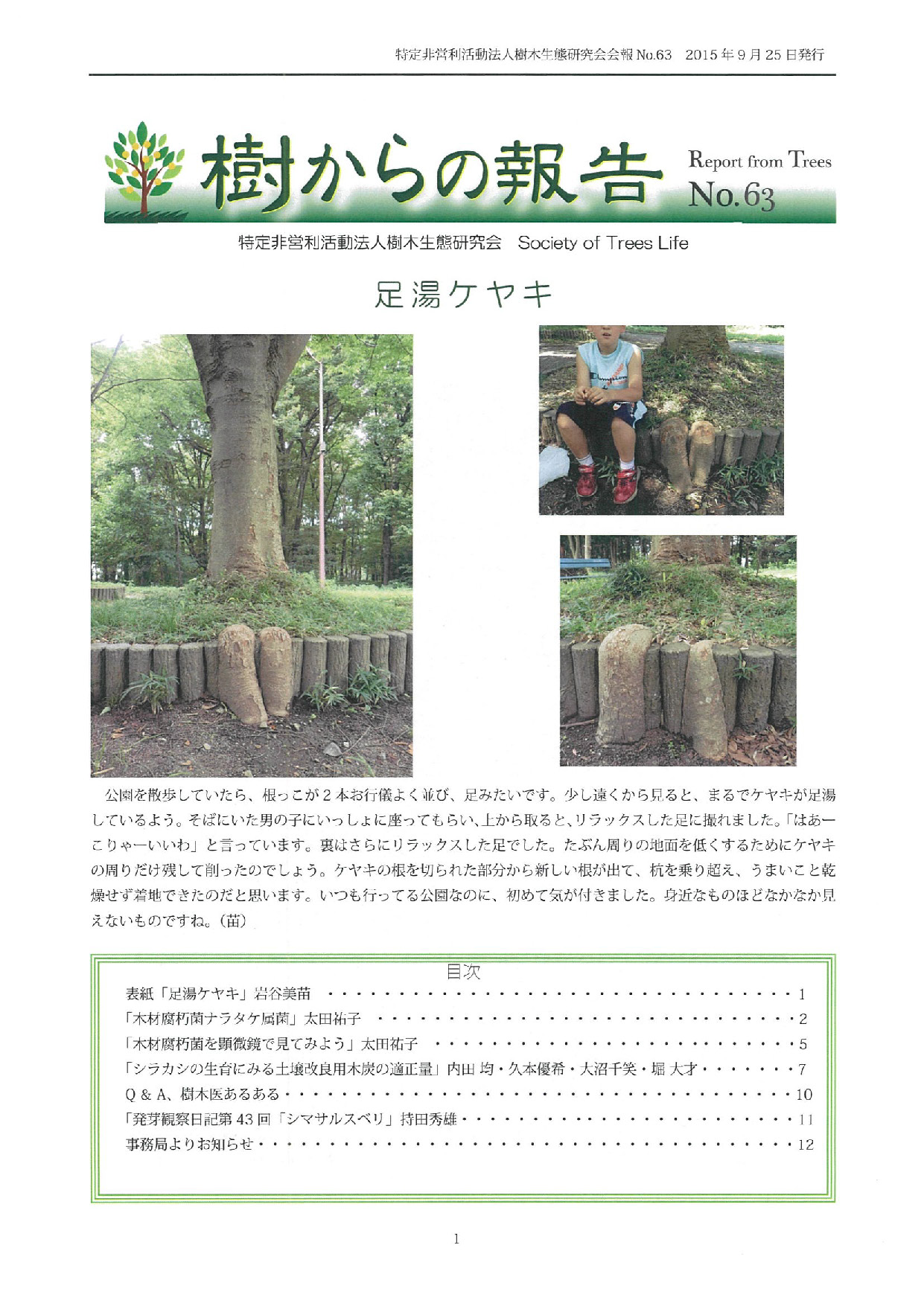 樹からの報告 会報63号